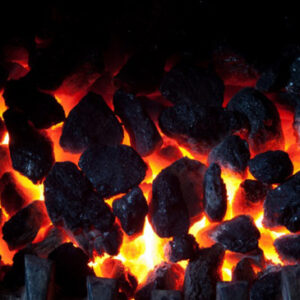 Wholesale of coal